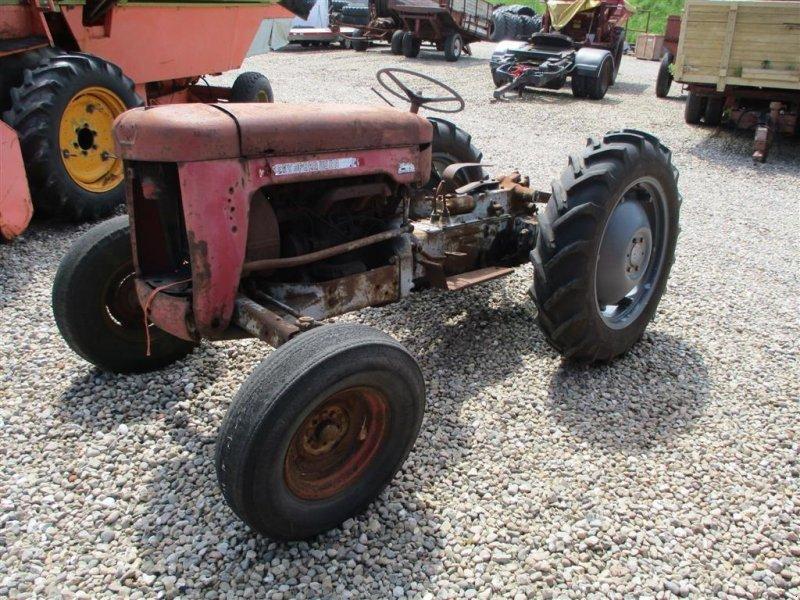 Traktor des Typs Massey Ferguson 25 4 cylindere diesel, Gebrauchtmaschine in Lintrup (Bild 1)