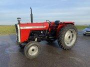 Massey Ferguson 290 Traktor