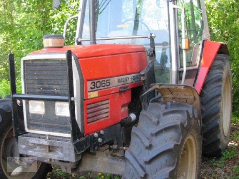Traktor des Typs Massey Ferguson 3065 S, Gebrauchtmaschine in Eckental (Bild 1)