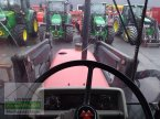 Traktor des Typs Massey Ferguson 3075-4 in Bergland