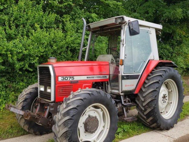 Traktor des Typs Massey Ferguson 3075 mit FZW, Gebrauchtmaschine in Honigsee (Bild 1)