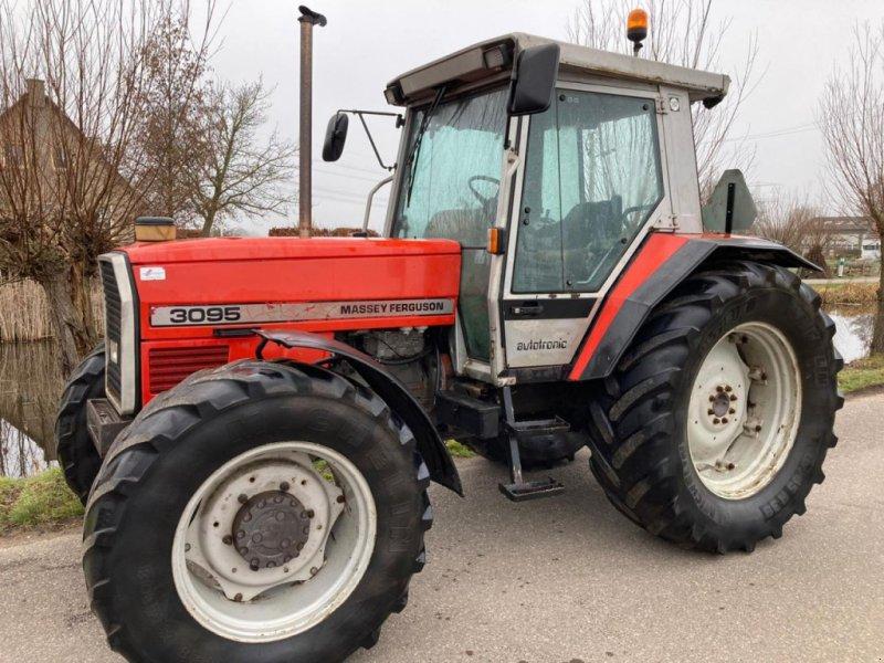 Traktor типа Massey Ferguson 3095, Gebrauchtmaschine в Stolwijk (Фотография 1)