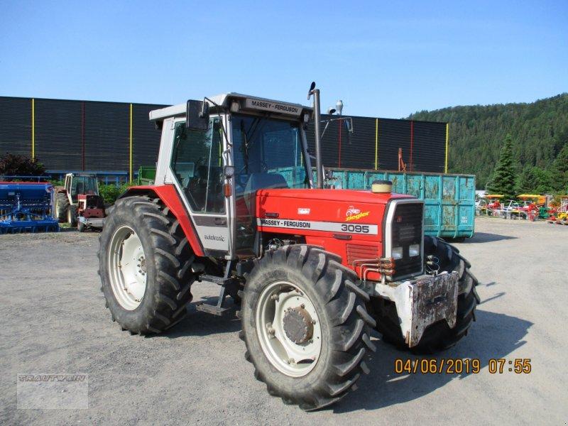 Traktor des Typs Massey Ferguson 3095, Gebrauchtmaschine in Schopfheim (Bild 1)