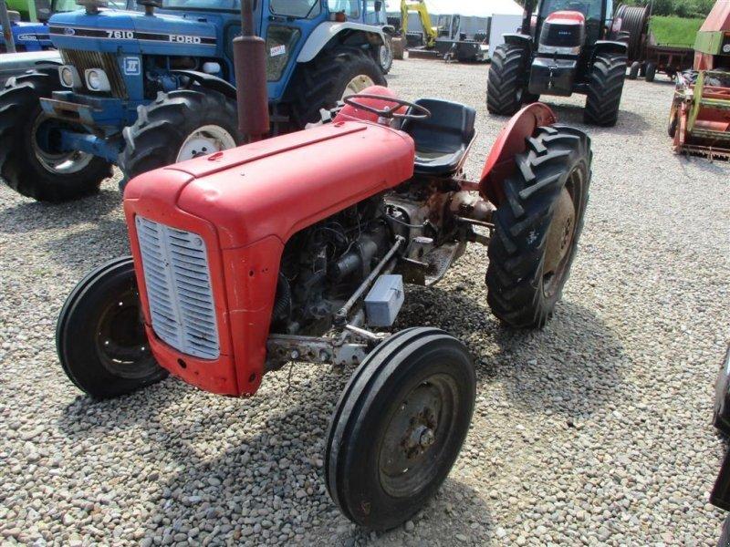 Traktor des Typs Massey Ferguson 35 Benzin, Gebrauchtmaschine in Lintrup (Bild 1)