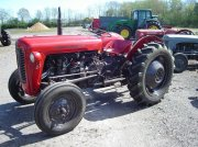 Traktor tipa Massey Ferguson 35 benzin, Gebrauchtmaschine u Ejstrupholm