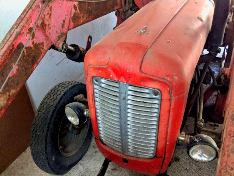 Traktor des Typs Massey Ferguson 35 X, Gebrauchtmaschine in Thalheim bei Wels (Bild 1)