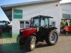 Traktor des Typs Massey Ferguson 3630 T3  #461 in Schönau b.Tuntenhaus