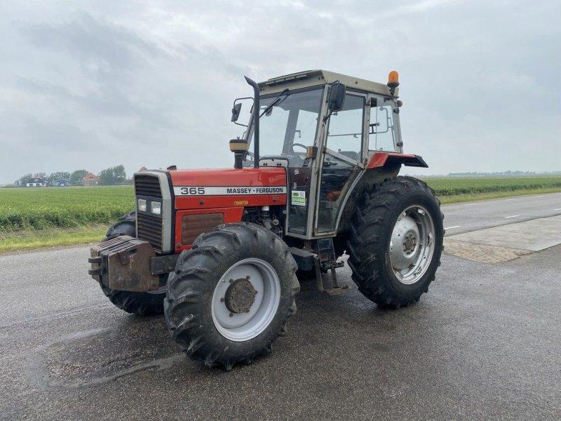 Traktor des Typs Massey Ferguson 365, Gebrauchtmaschine in Callantsoog (Bild 1)