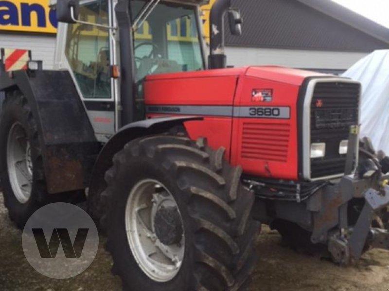 Traktor des Typs Massey Ferguson 3680, Gebrauchtmaschine in Husum (Bild 1)