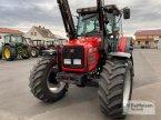 Traktor типа Massey Ferguson 4365 в Amöneburg - Roßdorf
