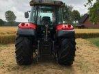 Traktor des Typs Massey Ferguson 5455 Dyna 4 в Seelze