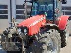 Traktor des Typs Massey Ferguson 5455 in Kleinlangheim - Atzhausen
