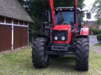 Traktor des Typs Massey Ferguson 5455 in Estorf