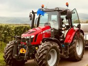 Massey Ferguson 5613 Traktor