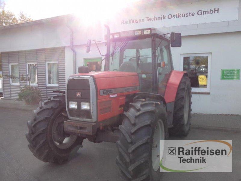 Traktor des Typs Massey Ferguson 6160 Dynashift, Gebrauchtmaschine in Eckernförde (Bild 3)