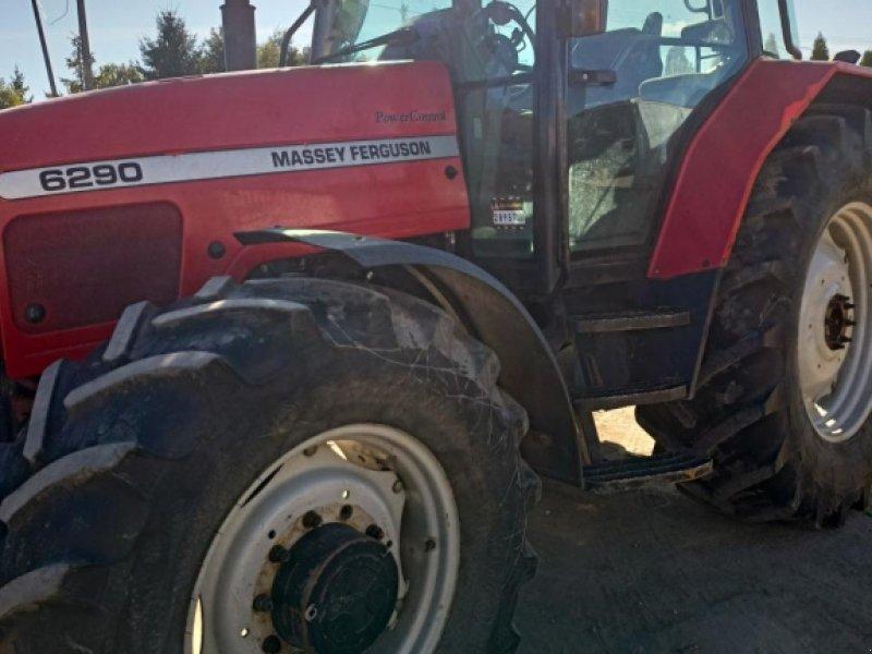 Traktor des Typs Massey Ferguson 6290, Gebrauchtmaschine in Wippingen (Bild 1)