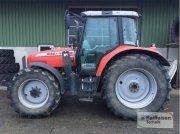 Traktor des Typs Massey Ferguson 6470 Dyna6, Gebrauchtmaschine in Wittingen