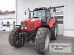 Traktor des Typs Massey Ferguson 6485 Dynashift in Eckernförde