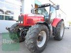Traktor des Typs Massey Ferguson 7495 in Großweitzschen