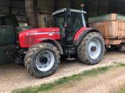 Massey Ferguson 8250 XTRA Traktor