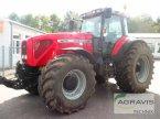 Traktor des Typs Massey Ferguson 8270 XTRA in Nienburg