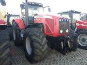 Traktor des Typs Massey Ferguson 8470-4 Dyna-VT, Gebrauchtmaschine in Schwechat