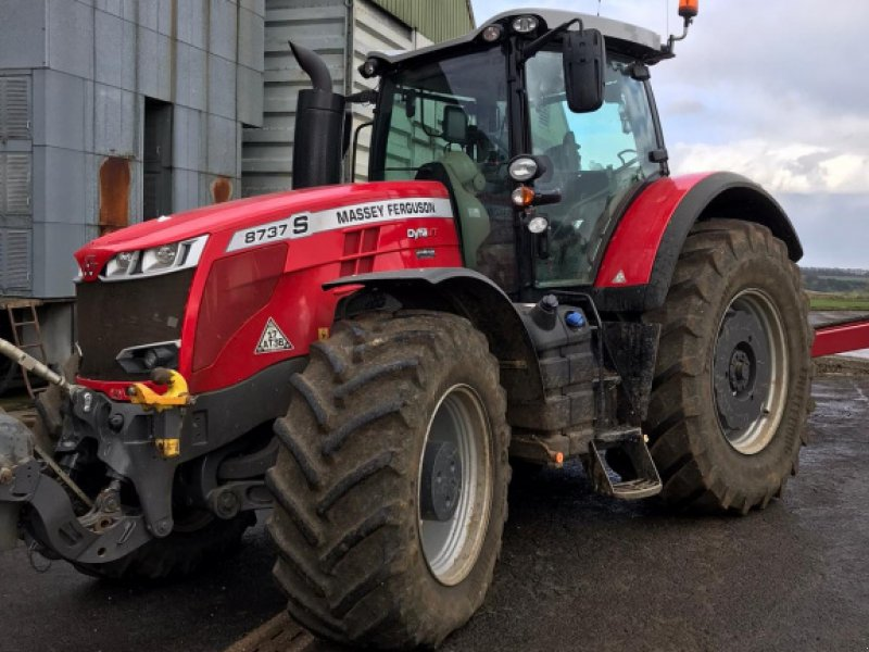 Traktor of the type Massey Ferguson 8737 Exclusive Dyna, Gebrauchtmaschine in Grantham (Picture 1)