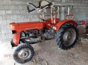 Traktor des Typs Massey Ferguson MF 25, Gebrauchtmaschine in Tuntenhausen