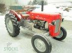Traktor des Typs Massey Ferguson MF 25 ekkor: Pfaffenhofen/Telfs