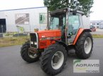 Traktor des Typs Massey Ferguson MF 3065 in Meppen