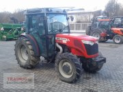 Massey Ferguson MF 3645 F Plantagen Traktor