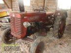 Traktor des Typs McCormick FARMALL D 320 in Homberg (Ohm) - Maul