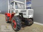 Traktor des Typs Mercedes-Benz MB Trac 800 in Neuhof - Dorfborn