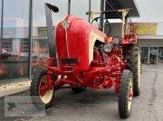 Traktor des Typs Porsche Allgaier AP18  Restauriert Top Zustand Oldtimer, Gebrauchtmaschine in Gevelsberg