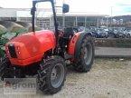 Traktor des Typs Same Deutz Fahr FRUTTETO 70 NATURAL in Münsingen
