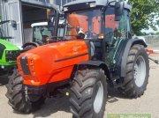 Traktor типа Same Dorado 70 Classic DT, Gebrauchtmaschine в Bühl