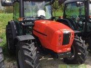 Traktor des Typs Same Dorado 80 Classic, Gebrauchtmaschine in Bühl
