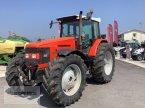 Traktor del tipo Same Silver 180 In Valla Di Riese Pio X