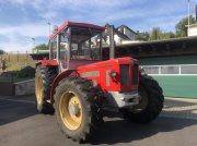 Traktor des Typs Schlüter 1250 Super SF 6900 Allradtraktor erst 6660 Stunden!, Gebrauchtmaschine in Niedernhausen