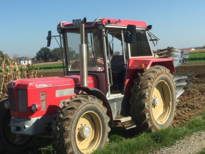 Traktor des Typs Schlüter 1250 VL, Gebrauchtmaschine in Pfatter (Bild 1)