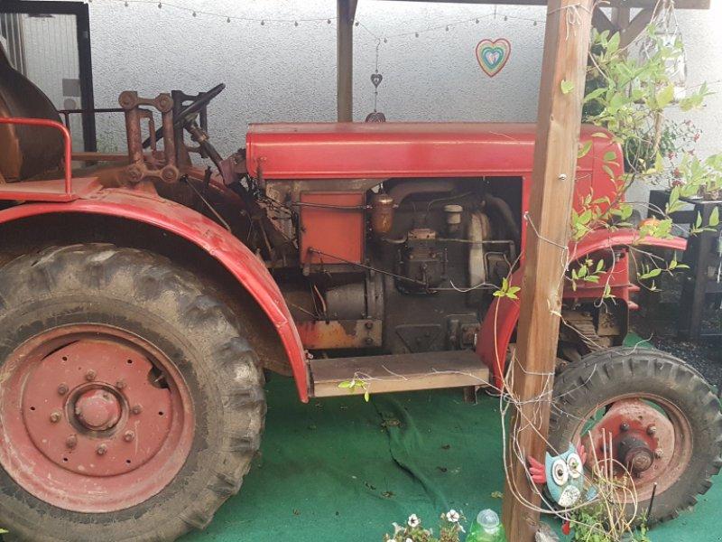 Traktor des Typs Schlüter AS 30, Gebrauchtmaschine in Nordheim (Bild 2)