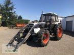 Traktor типа Sonstige David Brown 1594 в Spelle