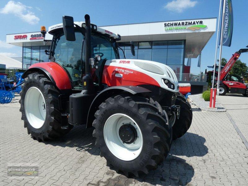 Traktor des Typs Steyr 6175 Impuls CVT, Neumaschine in Aurolzmünster (Bild 1)