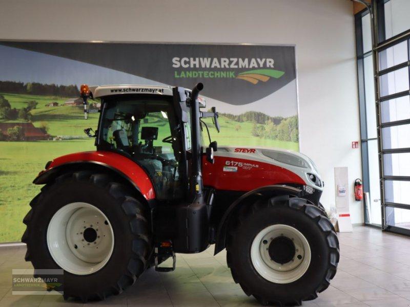 Traktor типа Steyr 6175 Impuls CVT, Neumaschine в Gampern (Фотография 1)