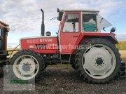 Traktor tipa Steyr 8080 SK1, Gebrauchtmaschine u Horitschon