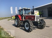 Traktor du type Steyr 8130 A T SK 2 (KK), Gebrauchtmaschine en Zell an der Pram