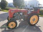 Traktor des Typs Steyr 84 ekkor: Kronstorf