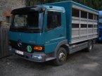 Transportfahrzeug des Typs Mercedes-Benz Atego 815 in Göpfritz/Wild