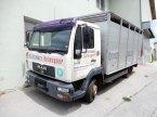 Unimog des Typs MAN 8.185 LLC L2000 / Viehtransporter в Mariasdorf