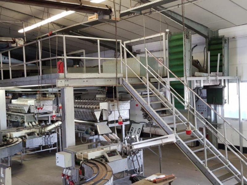Verarbeitungstechnik типа Newtec Karottenpackanlag, Gebrauchtmaschine в Hanhofen (Фотография 1)